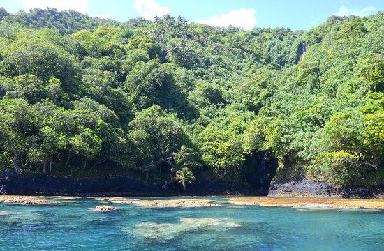 写真Teahupoo Excursion Taxi Boat枚