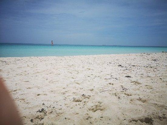 Ocean Casa del Mar Photo