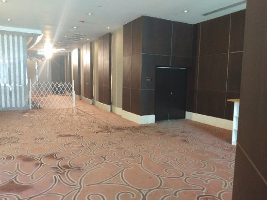 曼谷千禧素坤逸大酒店照片