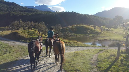 High Country Horses: guide