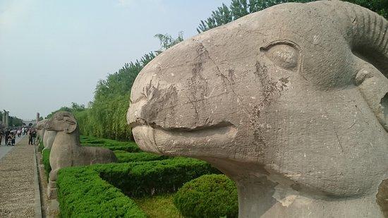 Fengyang County, Cina: DSC_0031_large.jpg