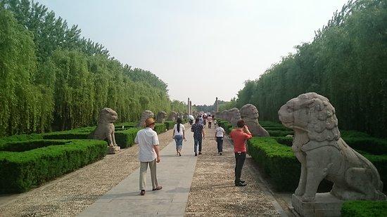 Fengyang County, Cina: DSC_0028_large.jpg