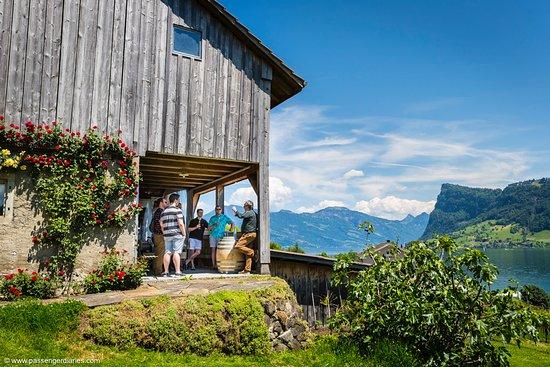 Passenger Diaries: Wine Tasting Experience Lucerne