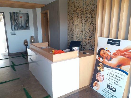 Blu Feather Hotel & Spa Udaipur: Spa Reception !