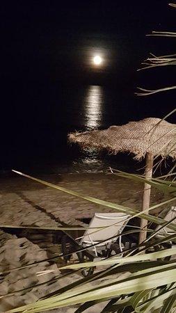DTC Beach : Une soirée  les pieds dans l'eau 😁