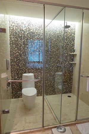 Novotel Bangkok Suvarnabhumi Airport: ห้องสุขาและห้องอาบน้ำกั้นกลางด้วยกระจกใส ครับ