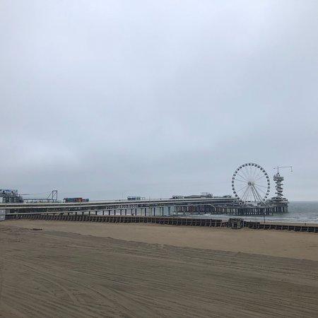 Carlton Beach ภาพถ่าย