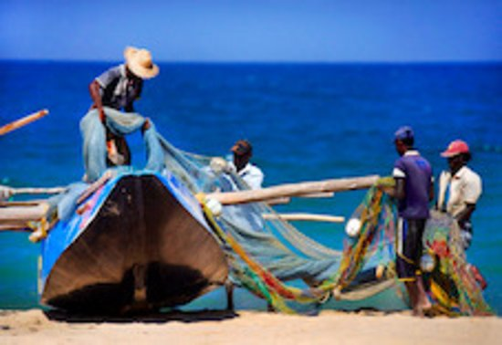 Karpaha Sands: Fishermen hauling their nets in fornt of our gotel... Add culture to your beach stop