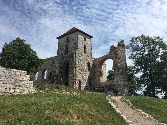 Tenczyn Castle: zamek - widok na dziedziniec