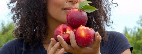 Il Giardino della Frutta