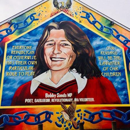 Imagen de Tour de 2 horas en taxi negro por murales y muros de la paz en Belfast