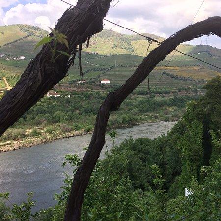 Quinta de Marrocos Photo