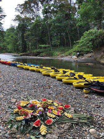 Jungle Kayak: Ready to go