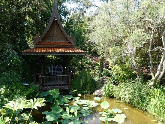 Giardini La Mortella: asiatischer Tempel am Teich