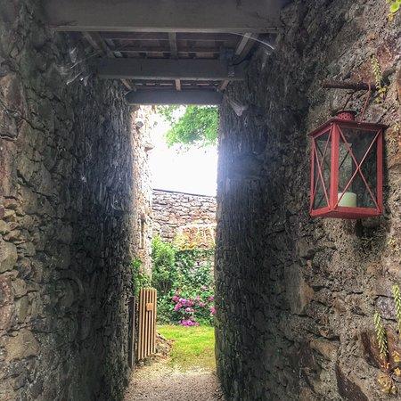 Saint-Etienne-du-Bois, فرنسا: Un endroit paisible où il fais bon d'y séjourner... 😍