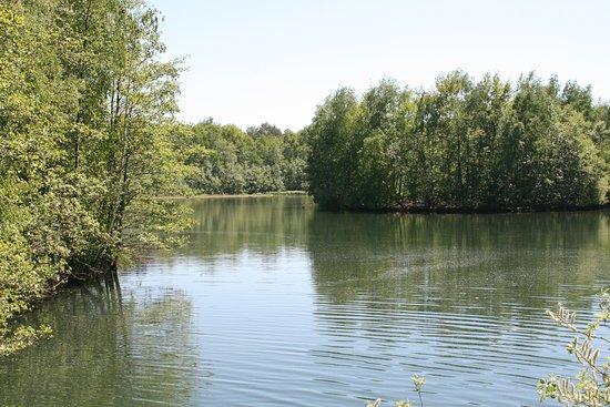 Bottrop, Tyskland: Blick auf Insel(n) im See.