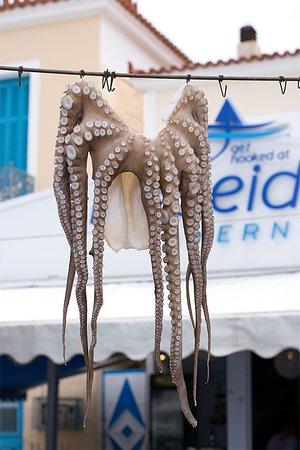 Poseidon taverna : octapus