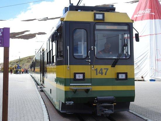 Kleine Scheidegg: COG TRAIN