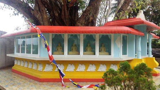 Dodanduwa, Sri Lanka: 20180602_084845_large.jpg