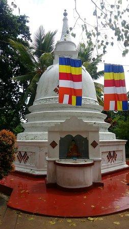 Dodanduwa, Sri Lanka: 20180602_084828_large.jpg