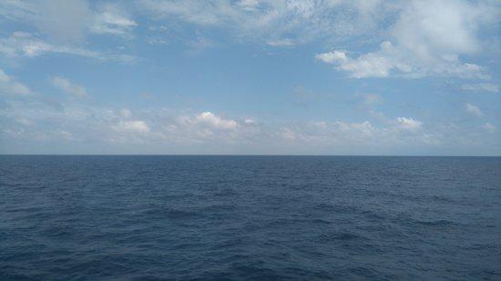 Marina Blue Photo