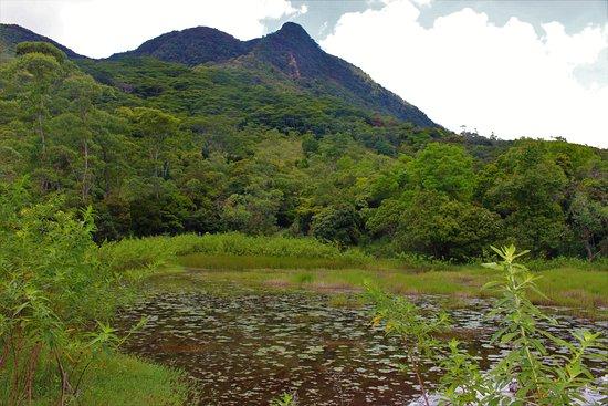 Central Province, Sri Lanka: Dothtugala mountain peak in Knuckles range