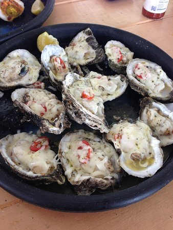 Eastpoint, FL: Oysters Margarita!!