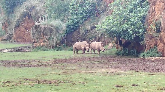 Parque de la Naturaleza de Cabarceno照片