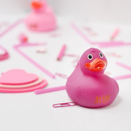 Dukki Ltd: Ducks in every colour