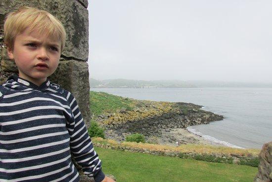 Inchcolm Abbey and Island: Inchcolm Island