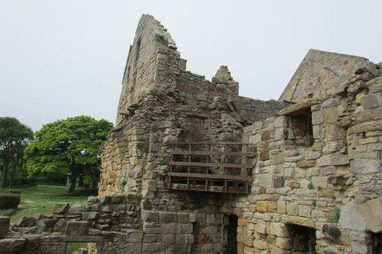 Inchcolm Abbey and Island: Inchcolm Abbey