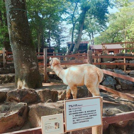 Rakujuen Park Photo