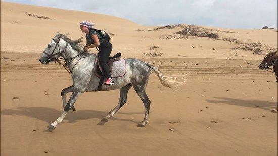 La Maison du Cheval: galloping!