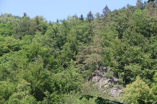 Saxon Switzerland National Park照片