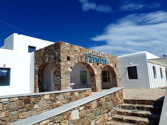 Delos & Mykonos Guide Photo