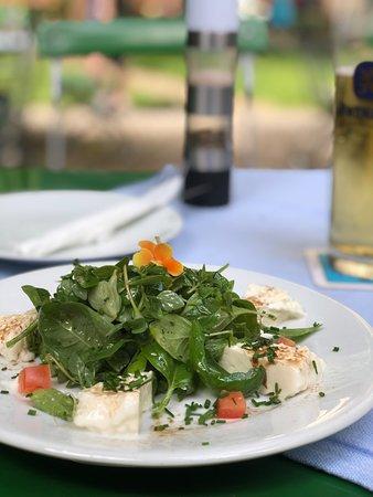 Walting, เยอรมนี: selbstgemachter Mozzarella und Salat