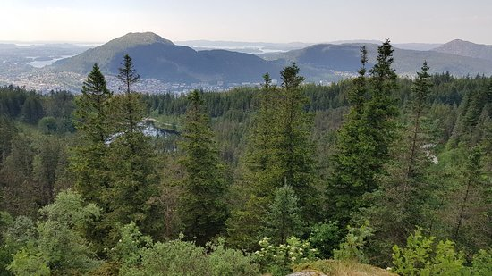 Vidden Trail between Mt. Fløyen and Mt. Ulriken照片