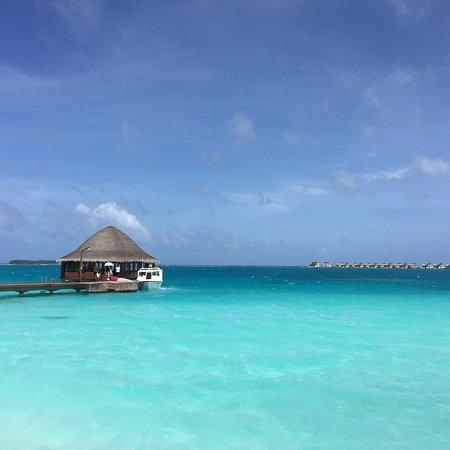 马尔代夫微拉瓦鲁悦椿度假村照片