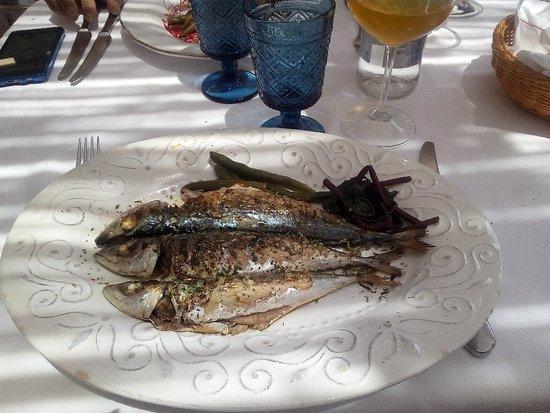 Taverna La Cialoma照片