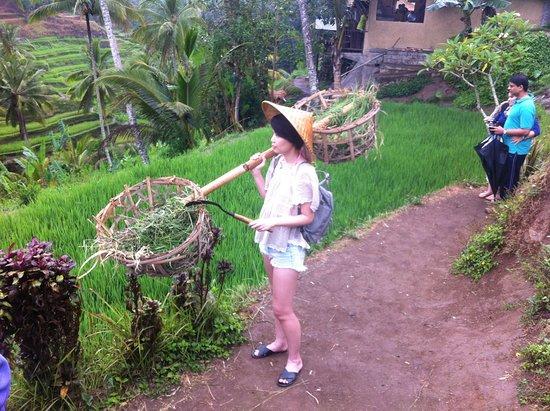 Gday Bali Driver - Day Tours照片