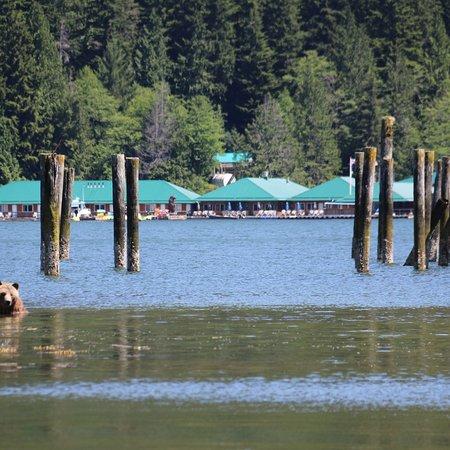 Glendale Cove, Canada: photo6.jpg