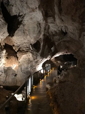 Ruakuri Cave照片