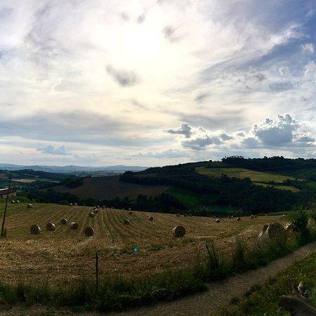 Collazzone, Italy: photo0.jpg