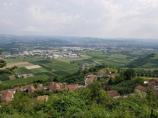 ItaliAnna - Food & Wine Tours: Beautiful view of the Langhe.