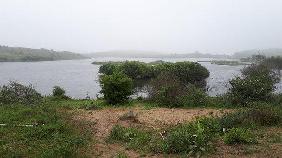 Nationaal Park Zuid Kennemerland: Naturpark