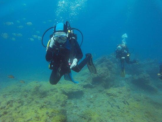 Atlantic Divers: Drifting along....