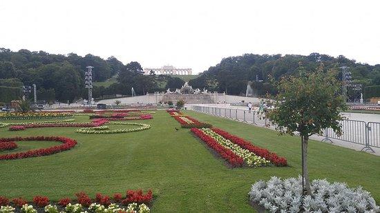 พระราชวังเชินบรุนน์: Foto dei giardini