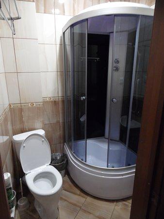 Domashniy Ochag Hotel: Ванная коната хорошая, душ, туалет, все в номере.