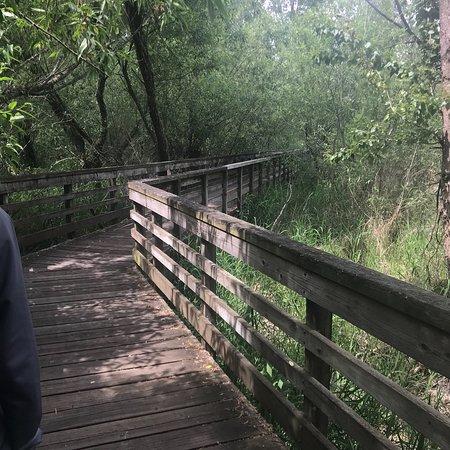 Juanita Bay Park照片