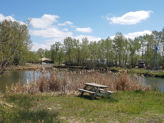 Riverbend Campground: Area along the loop to sit